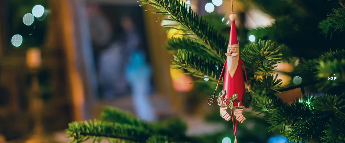 Merry Christmas 2020 from DSMenu.